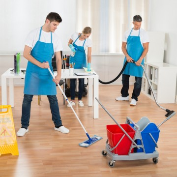 Cleaning Tips to Get Rid of Pet Odour at Home