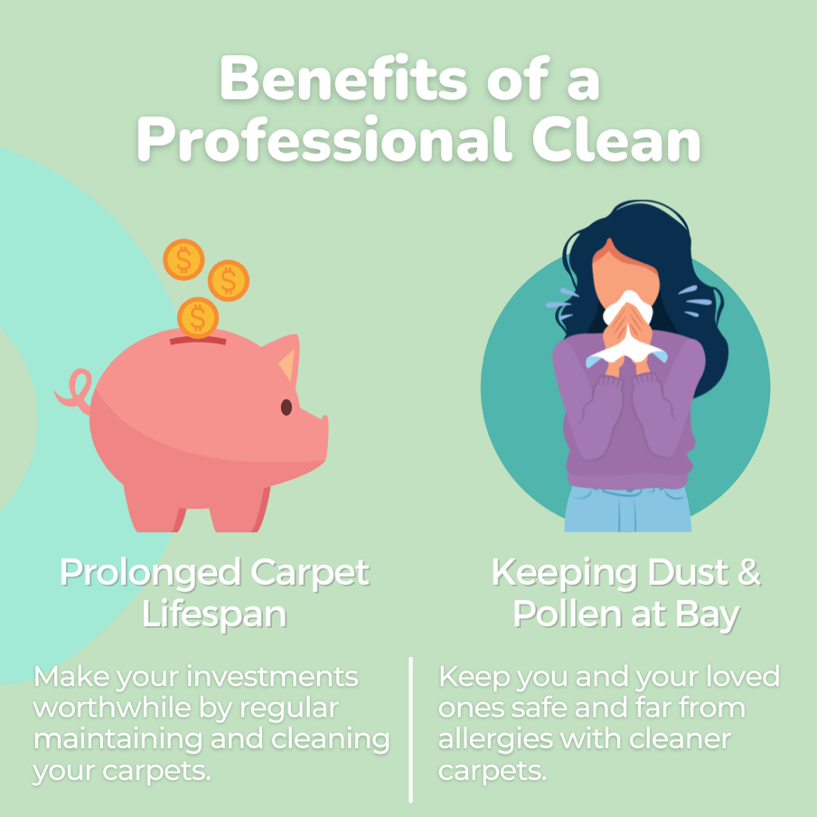 Benefits of a Professional Clean